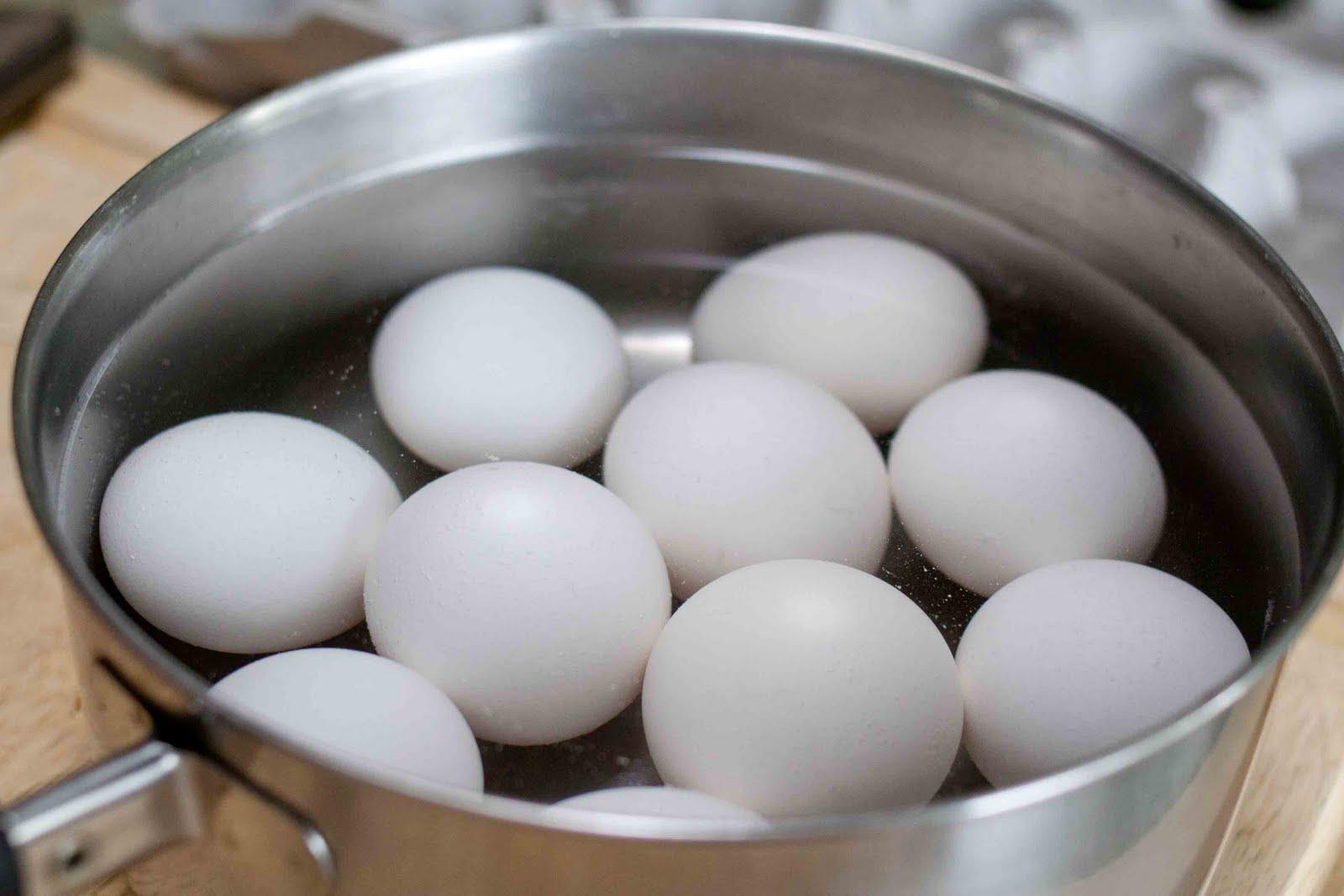 Kdy Dochází K Oplodnění Vajíčka?, Vajíčka