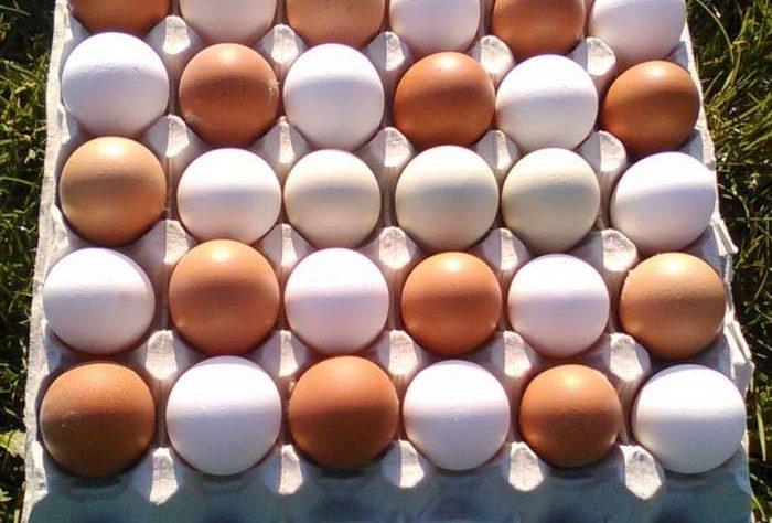 Test 10 Nejlepších Proteinů 2020, Vajíčka