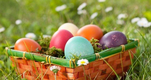 Slepice, Které Obarví Vejce Na Velikonoce Za Vás! – Abecedazahrady.cz, Vajíčka