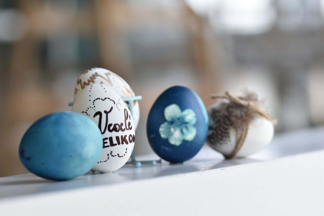Jak Urychlit Sklizeň Raných Brambor?, Vajíčka