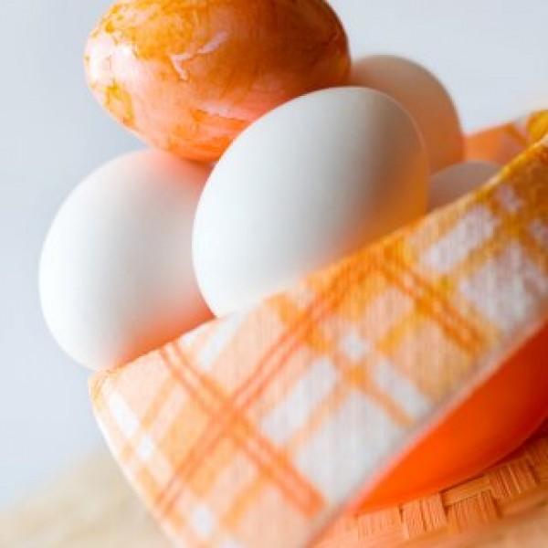 Kdy A Jak Očkovat Králíky?, Vajíčka