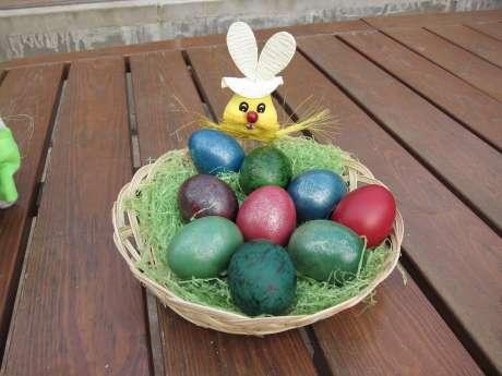 Jak Zlatoočky Poznají, Kam Neklást Vajíčka?, Vajíčka